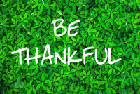 Let Thankfulness Continue