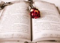 4 Storytelling Tips for Magnetic Copy