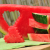The Art of Watermelon Carving